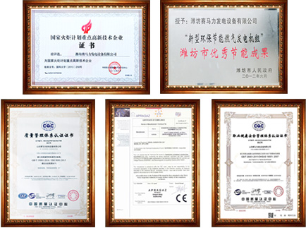 山东赛马力发电设备有限企业荣誉证书